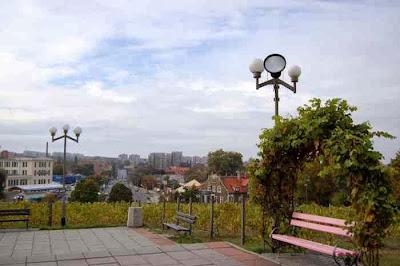 Widok ze Wzgórza Winnego na Zieloną Górę