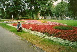 处处都是这种太普通的花坛,无论春夏秋冬。从未见过哪个国家比她更美。