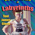 May 2011 Book Cover Award Entry #6 Love Gods and Labyrinths   Designed by Teel James Glenn