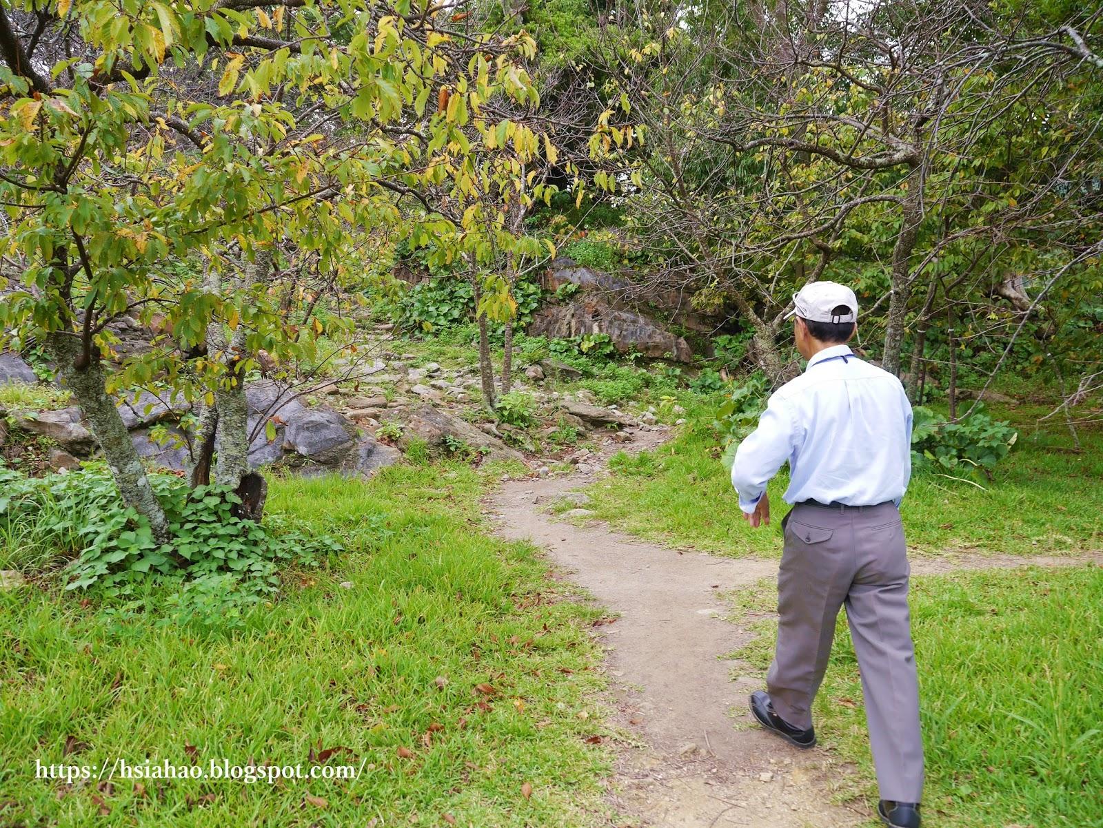 沖繩-景點-今歸仁城跡-今帰仁城跡-Nakijin-Castle-推薦-自由行-旅遊-Okinawa