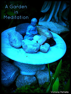 Meditation in Moonlight