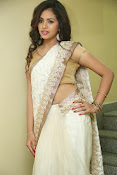 gowthami chowdary glamorous in saree-thumbnail-16