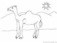 Camel On The Desert Coloring Pages