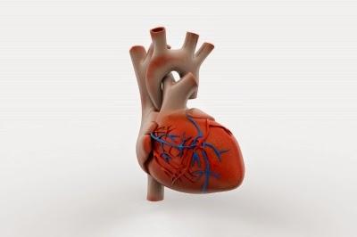 مرض القلب, ضغط الدم, تصلب الشرايين,