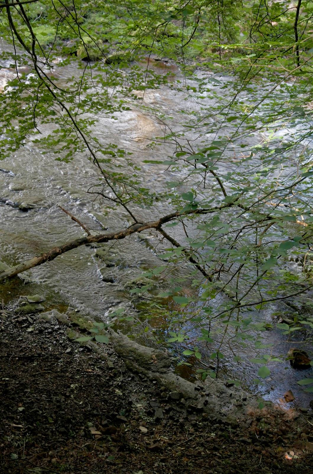 Robert ketchell 39 s blog even eden ebbs and flows River flowing from the garden of eden