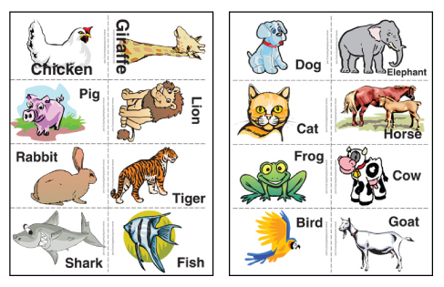 Witty image with printable animal flash cards