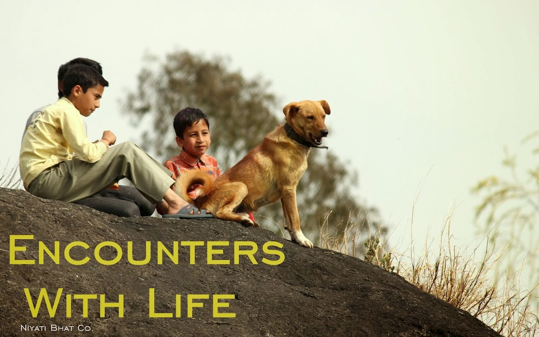Encounters With Life