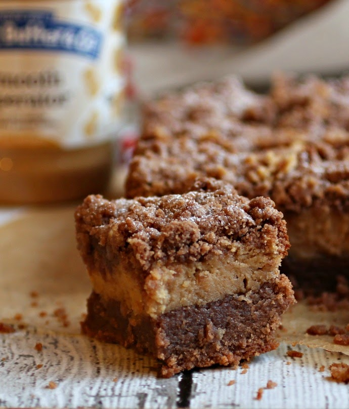 Chocolate and Peanut Butter Crumb Bars