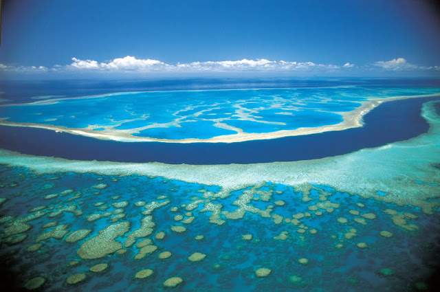 The great coral reef in Australia