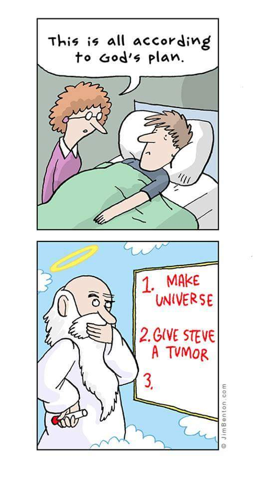 Funny God's Perfect Divine Plan Cartoon Picture