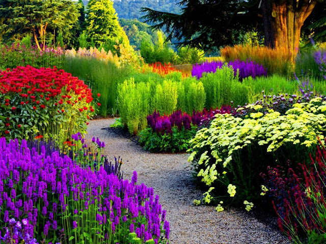 Beautiful Gardens