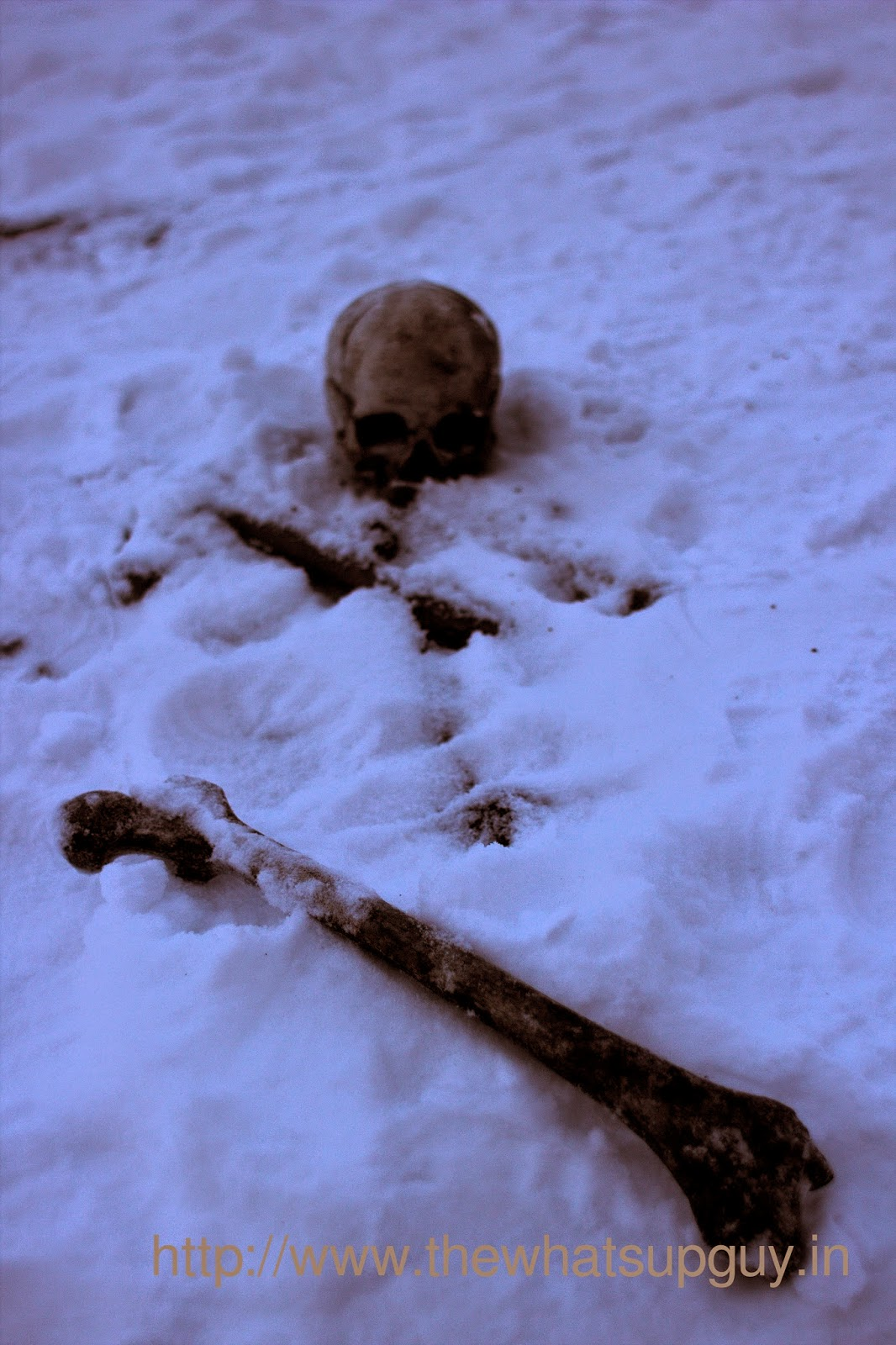Skeleton Skull Roopkund Trek With India Hikes Day 5