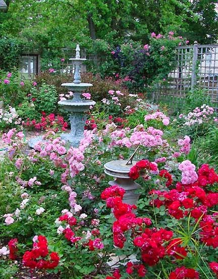 Pictures of rose garden ideas photograph gorgeous rose cot for Garden design with roses