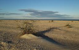 An Atlantic Coast Beach