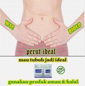 wsc obat diet herbal halal aman
