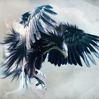 Eagle Hawk Wallpaper