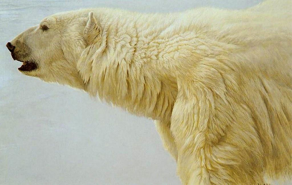 animales-pintados-con-oleo