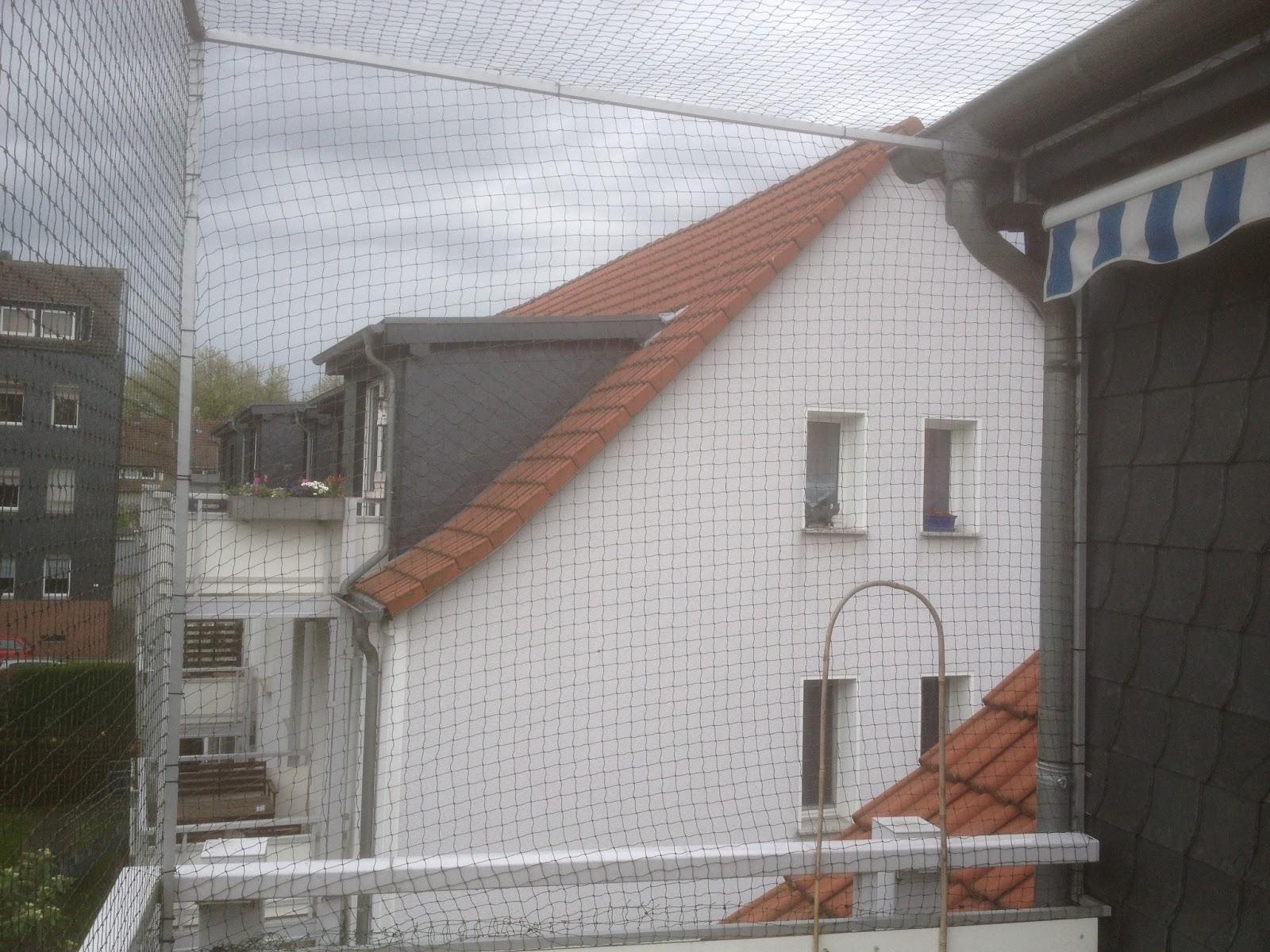 katzennetz nrw die adresse f r ein katzennetz katzennetz balkon essen balkon oben offen. Black Bedroom Furniture Sets. Home Design Ideas
