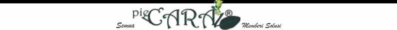 pieCARA ® Memberi Solusi | Bagaimana Cara ?