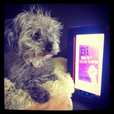 A fuzzy grey dog--Murchie--laying atop a fuzzy cream-coloured pillow. To his left (our right) is an e-reader with Bi: Notes For A Bisexual Revolution on the screen. The cover is purple with a raised white fist on it.