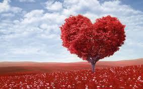 Erti Kasih Sayang