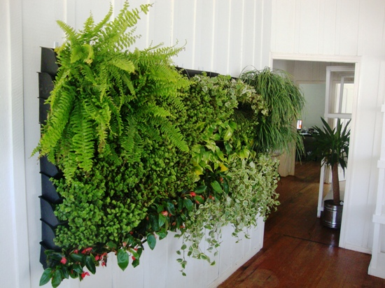 jardim+vertical+canguru+fachada+verde+jardim+interno+siteJPG