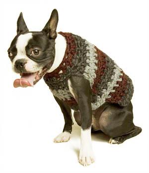 Crocheted Dog Sweater Pattern | AllFreeCrochet.com