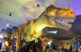 Memanjat Dinosaurus