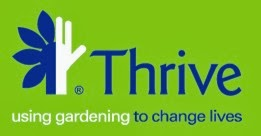 We support Thrive