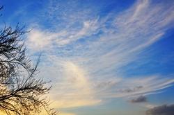Mild und sonnig...