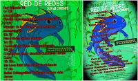 Primer Festival  Red de Redes 2017