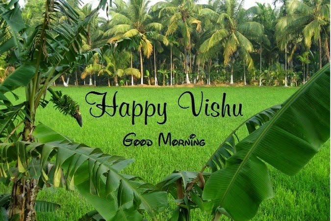 Vishu Messages HD Images, Best Greetings Photo's - Festival Chaska