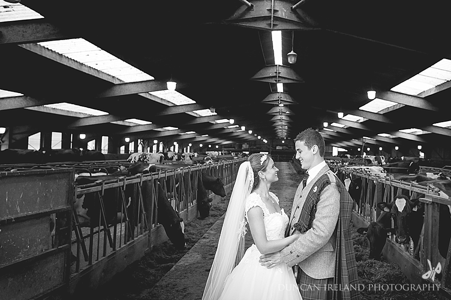 Cow shed wedding photography