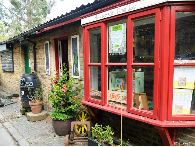 boutique shop Hackney City Farm East London Londres plantes