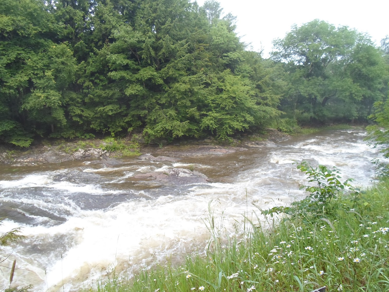 Groups Rock: Rain ..Humidity ..Heat ..Thunder ..Rain  #687B47