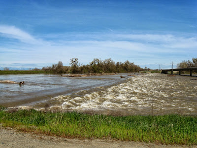 Flood Control: The Other Sacramento River