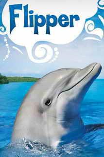 http://4.bp.blogspot.com/-nRgtbHtlXR8/WQ6SpICPIgI/AAAAAAAAEc0/7C8g6MSE_y4iN69lzU5Qkvb2wjhlOR5mACK4B/s1600/Flipper.jpg