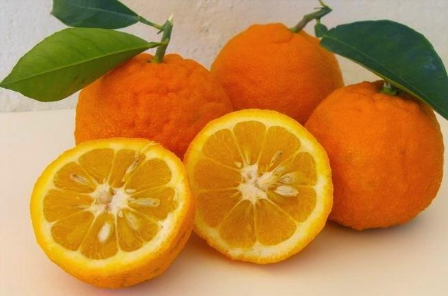 Sazón Natural, Naranja Agria