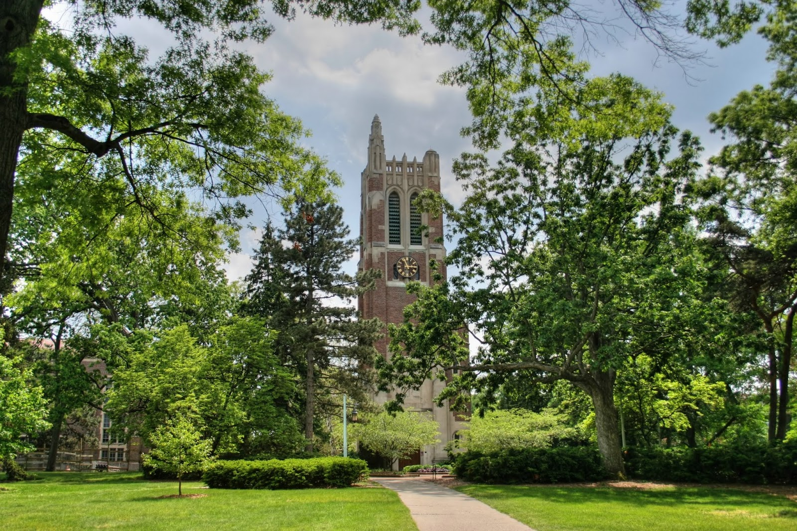 미시간 주립 대학교 (Michigan State University) 개요 및 입학, 학비 정보