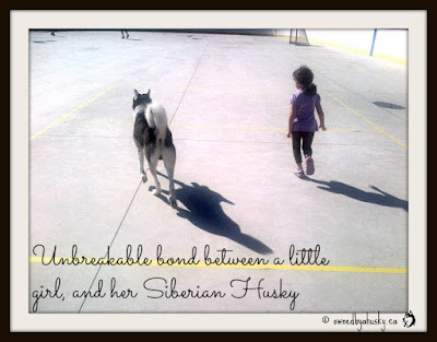 The bond between child and dog