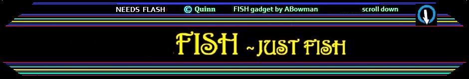 FISH -  just  fish