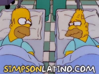 Los Simpson 10x08