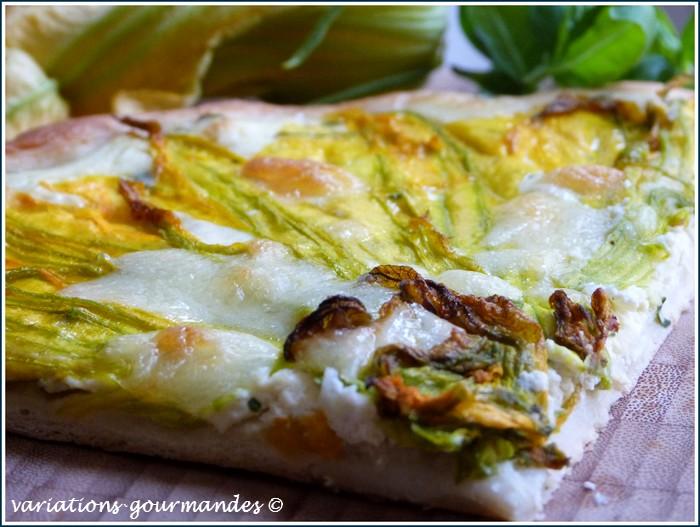 pizza_blanche_fleurs_courgettes_ricotta_mozzarella
