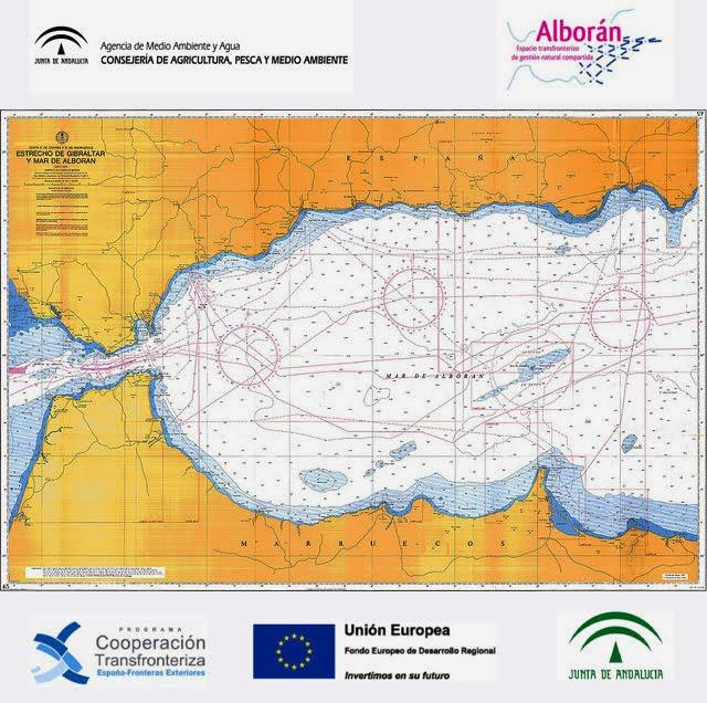 Campaña de voluntariado ambiental y sensibilización del Mar de Alboran 2013