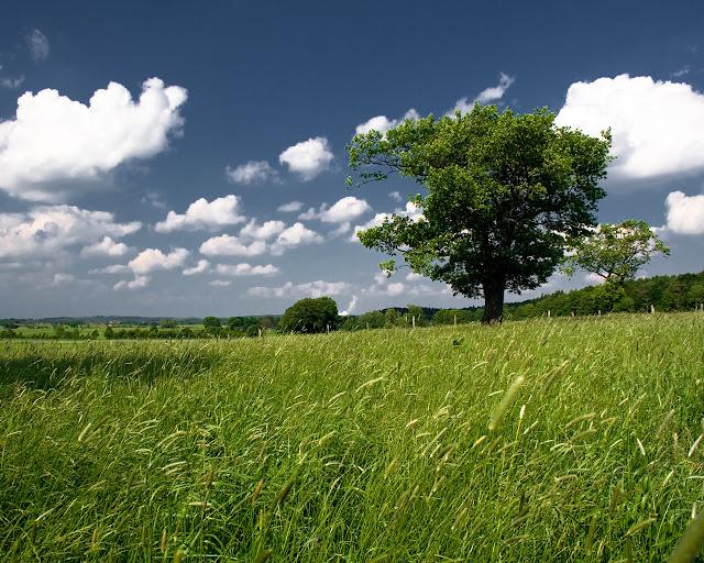 Great Landscape HD Wallpapers