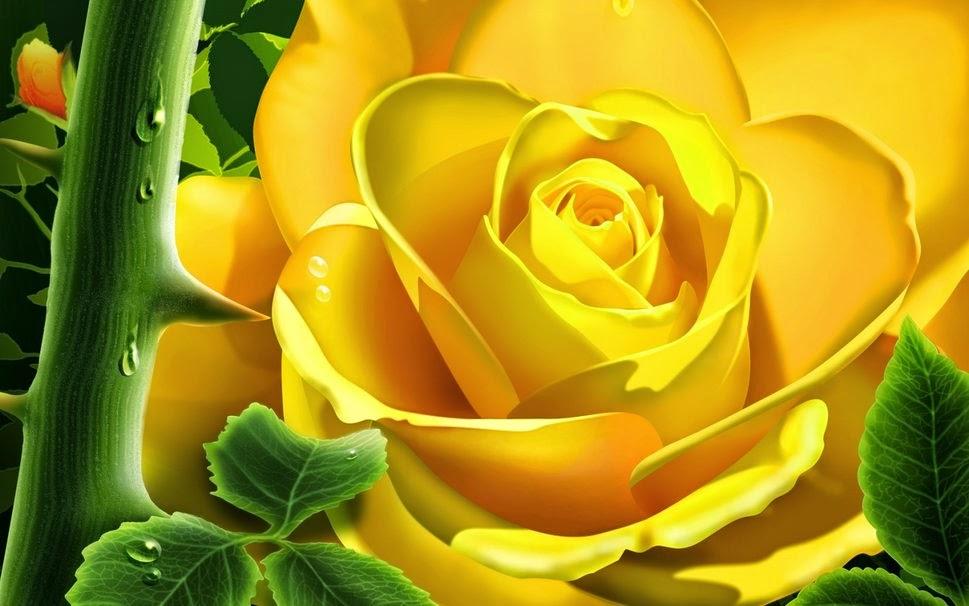 Imagen de una hermosa rosa amarilla de fondo, con un tallo con espinas, hojas y gotas de rocío en primer plano