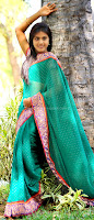 Radhika, reddy, stills, in, saree