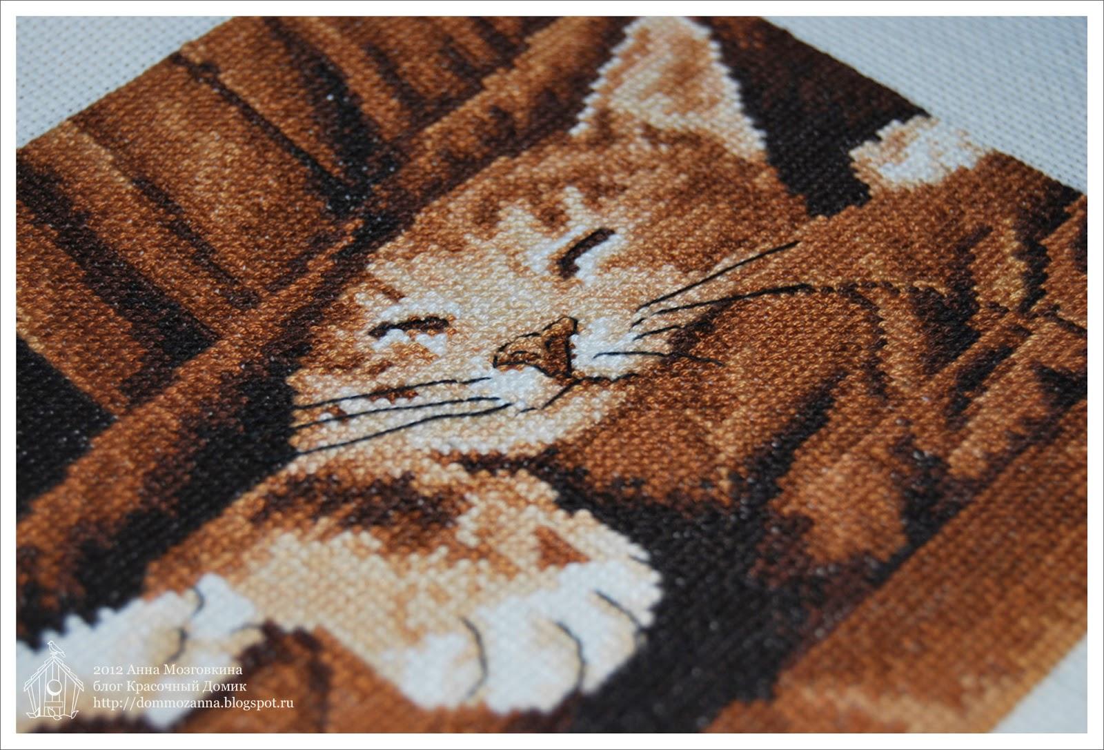 DMC спящий котенок вышивка крестом