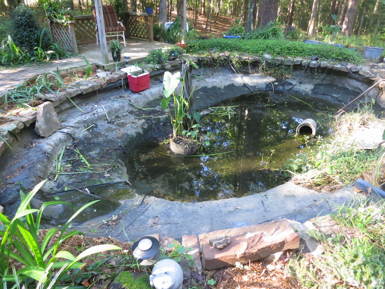 Prunepicker koi pond needs repair for Fish pond repair