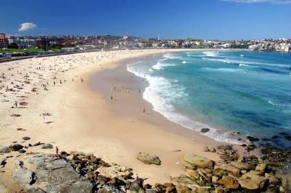 Y Electric Bondi Beach World Travel: Australian Beaches Great Views